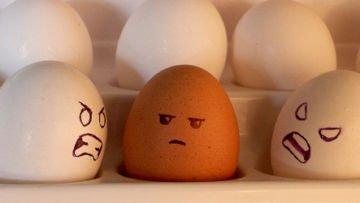 "Secara harfiah, haters adalah ""pembenci"""